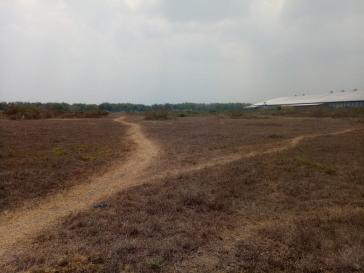 Tanah di Jombang Desa Tales, Strategis Area Industrial, Nol Jalan