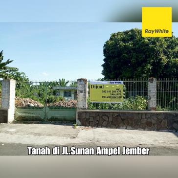 DIJUAL TANAH DI JL. SUNAN AMPEL JEMBER